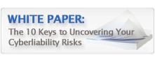 Insurance   Cyberliability WP