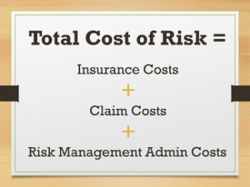 total risk management