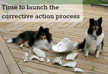 corrective action process