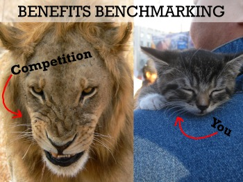 benefits benchmarking in transportation