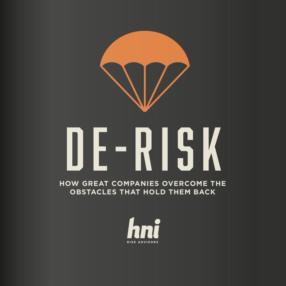 DE-RISK Book